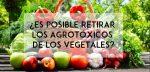 ¿Es posible retirar los agrotóxicos de los vegetales?
