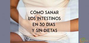 cómo sanar los intestinos en 30 dias y sin dietas