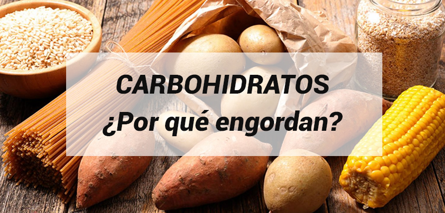 ¿por qué engordan los carbohidratos?